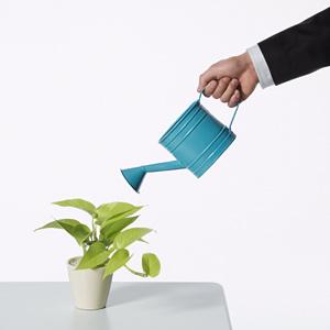lead nurturing campaign